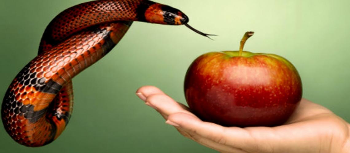 7 pecados del emprendedor